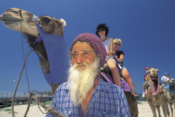 Camel Rides: a great place to visit in Victor Harbor.  Image &copy SATC; Adam Bruzzone. This photo sponsored by Art - Picture Frames and Framing - Dealers Category.