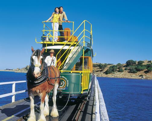 Riding The Horse Drawn Tram: a great place to visit in Victor Harbor.  Image © ATC; SATC; Richard Powers. This photo sponsored by Accommodation - Caravan Parks Category.