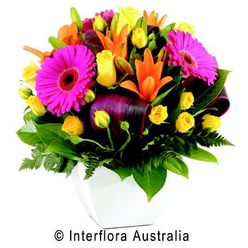 Victor Harbor Locality List  Image . This photo sponsored by Flowers Category.